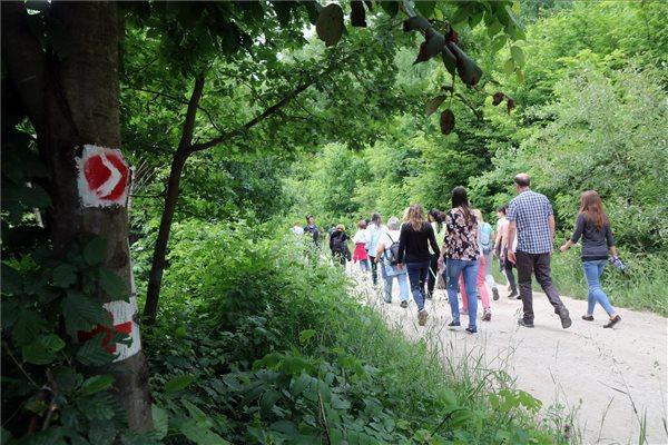 Szívbetegek rehabilitációját segítő tanösvényt avattak Miskolcon