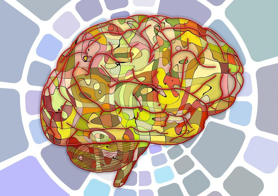A szénanátha megváltoztatja az agyat