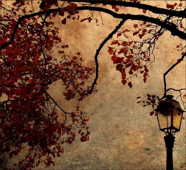 Őszi időjárás - 8 TIPP az őszi depi és a megfázás elkerülésére!