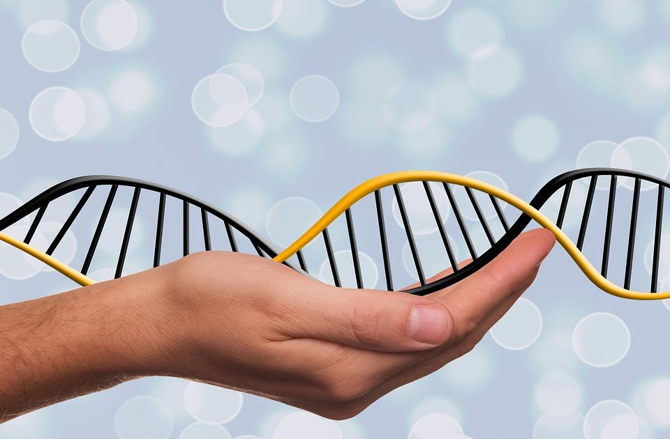 A dohányzás több mint 30 évig hatással lehet a DNS állományra