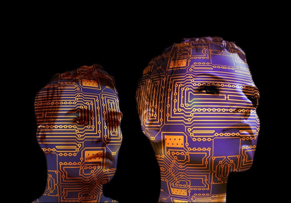 A nagyobb agy csak részben magyarázza az emberi intelligencia kialakulását