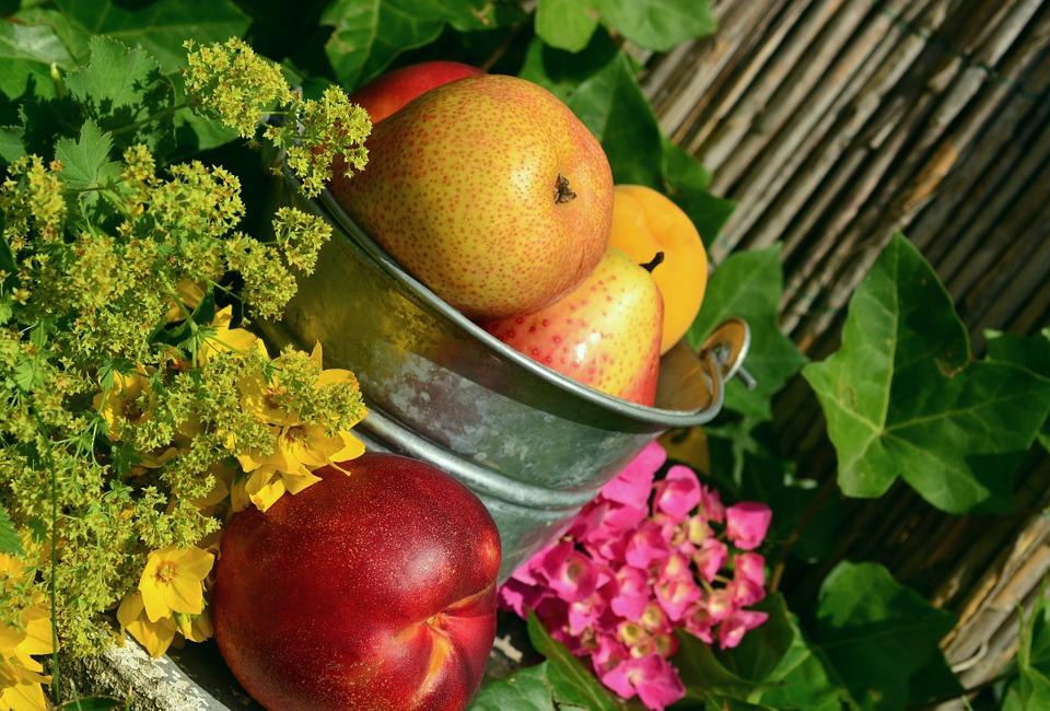 Közösségi nyomásra egészségesebben kezdünk étkezni