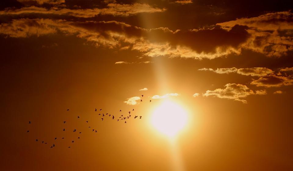 A napsütés jót tesz a mentális egészségnek a hőmérséklettől, légszennyezettségtől, és az esőtől függetlenül