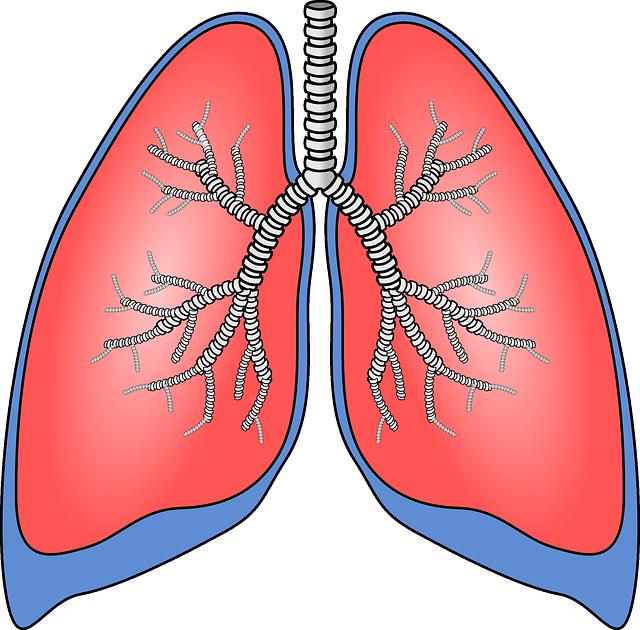 dohányzás és krónikus obstruktív tüdőbetegség