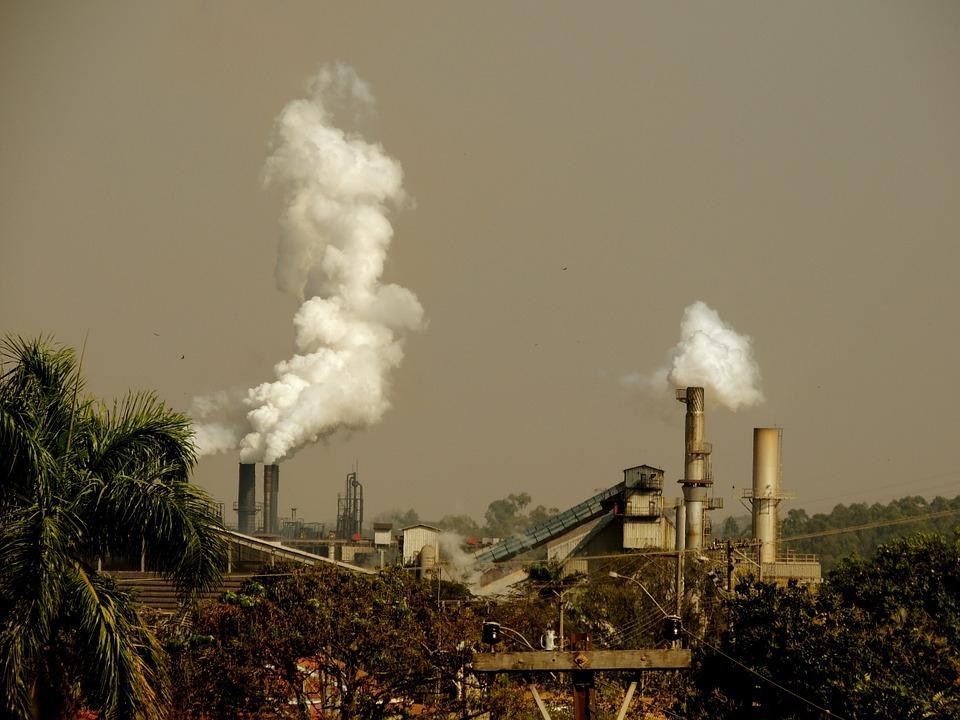 A környezetszennyezés és a tisztább otthonok miatt nő az allergiások száma