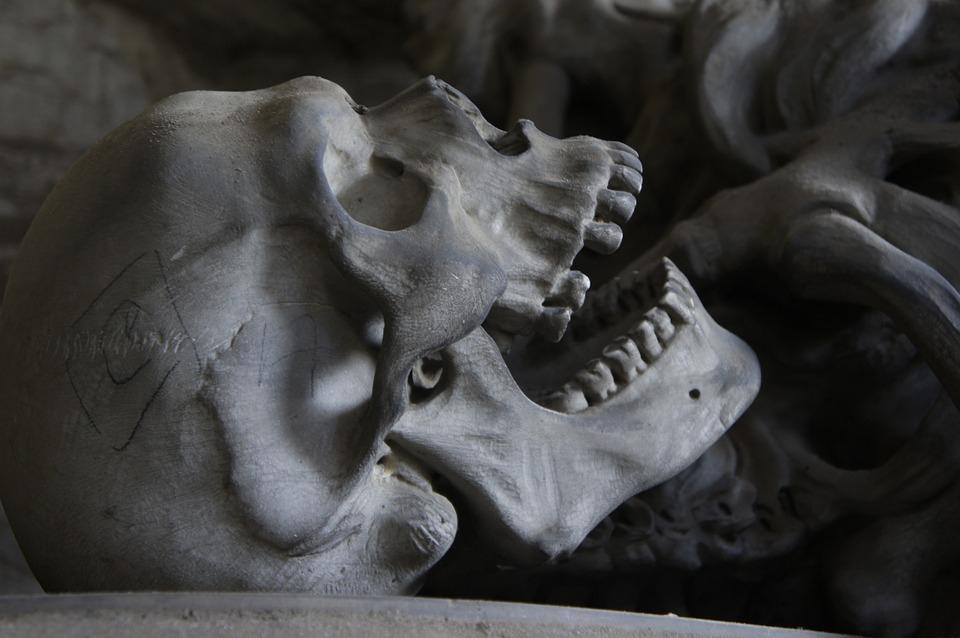 Nemzetközi ügy: Csontjaink egészsége