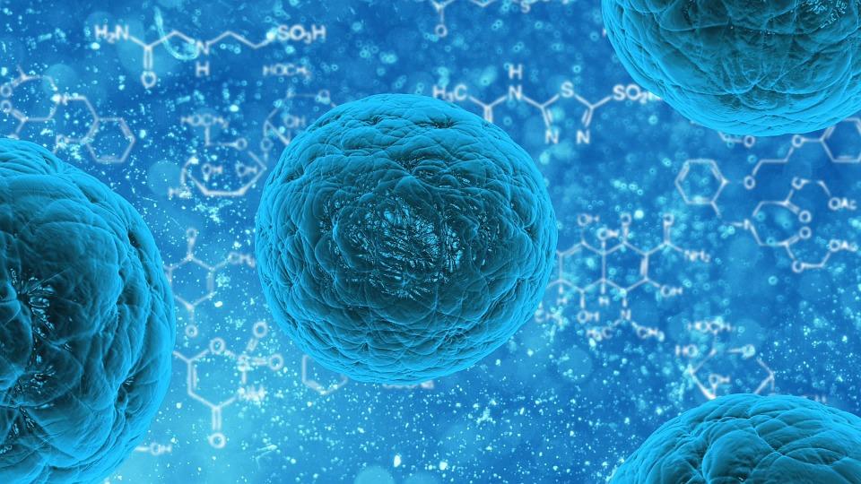 Az antibiotikum-rezisztencia legyőzéséhez vezethet a baktériumok Achilles-sarkának felfedezése